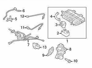 Ford Fusion Evaporative Emissions System Lines