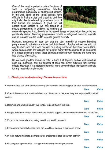 reading  worksheet