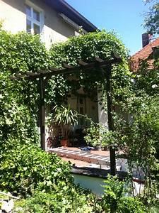 Pergola Elemente Holz : pergola holz ~ Sanjose-hotels-ca.com Haus und Dekorationen