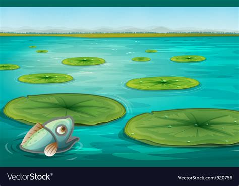 lily pads royalty  vector image vectorstock