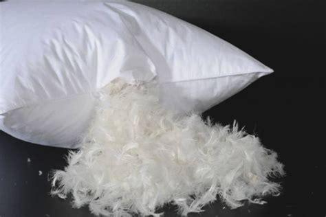 cuscino di piume come lavare un cuscino da una piuma a casa