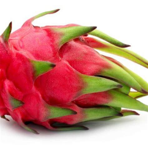 pitahaya assortiment special fruit