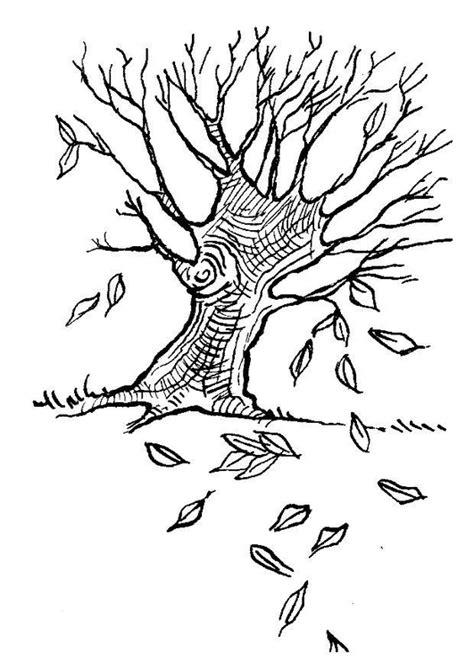 Bomen Kleurplaten by Kleurplaat Boom In Herfst Afb 7586 Images