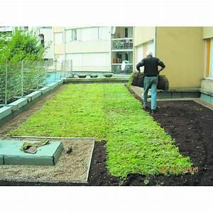Tapis D Extérieur Pour Terrasse : tapis de v g talisation pour toiture terrasse vegetorpin velitex ~ Teatrodelosmanantiales.com Idées de Décoration