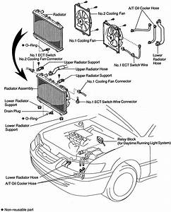 Oil Cooler Diagram Toyota 3 0 Engine Diagram