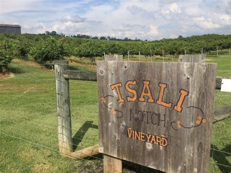 the top 10 things to do near the patio madisonville