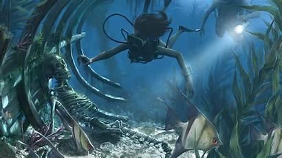 Underwater Scuba Diving Skeletons Diver Shipwrecks Wrecks
