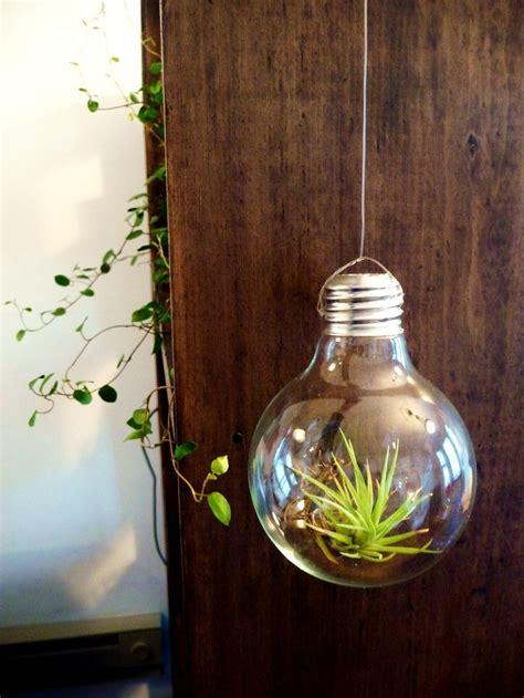light bulb terrarium 17 best images about light planter on planters