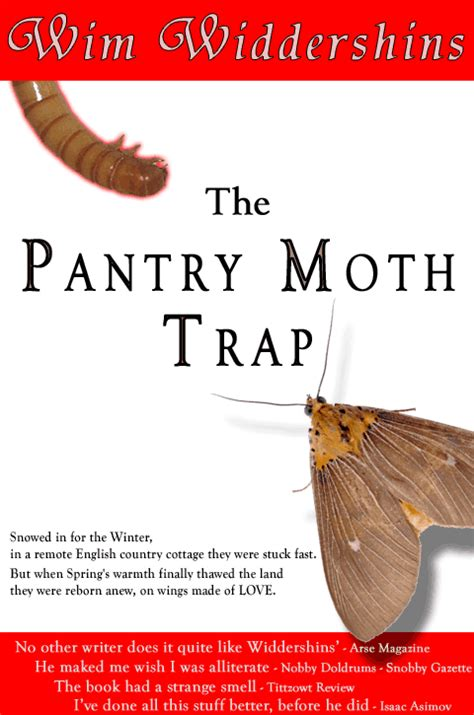 Cycle Of A Pantry Moth Thepixelpump Arcade Machines Diy Guides And More