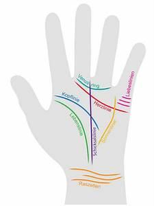 Handlesen: Das bedeuten die Hand Linien