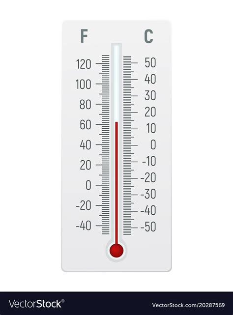 thermometer  degrees celsius  fahrenheit vector image