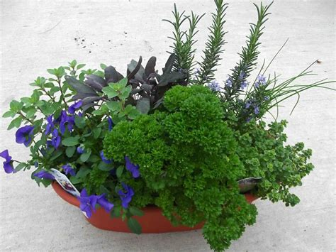 Herb Garden Pots Outdoors  Garden Design Ideas