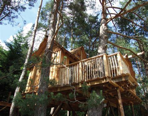 chalet dans les arbres vosges des cabanes cosy perch 233 es dans les arbres 171 lorraine magazine