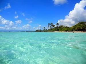 Location Voiture Guadeloupe Comparateur : des vacances en guadeloupe guadaloc ~ Medecine-chirurgie-esthetiques.com Avis de Voitures