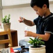 why choose montessori preschool why choose a montessori preschool leport schools 121