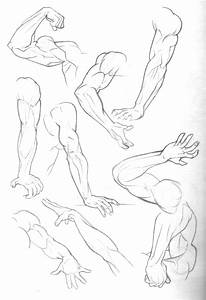 Sketch Dump: Arms by Bambs79 on DeviantArt