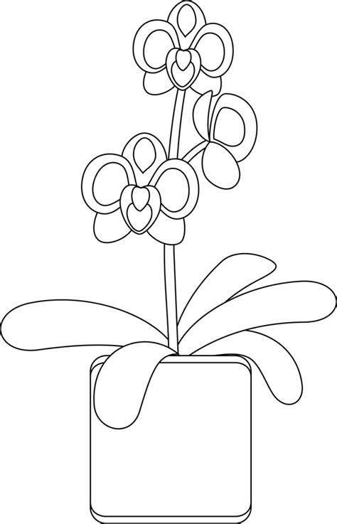 ustensiles de cuisine en p coloriage des orchidées dory fr coloriages