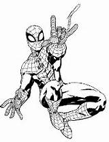 Coloring Spider Pages Topcoloringpages Questions Spiderman Shot sketch template