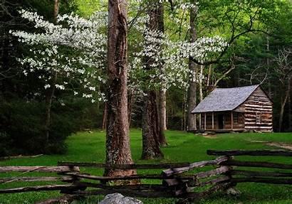 Smoky Mountains Cabin Dogwood
