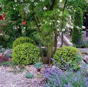 Hortensien Kombinieren Mit Anderen Pflanzen : das eigene gr n ein kiesbeet ist der perfekte garten f r faule welt ~ Eleganceandgraceweddings.com Haus und Dekorationen