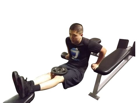 weighted bench dip weighted three bench dips exercise database jefit