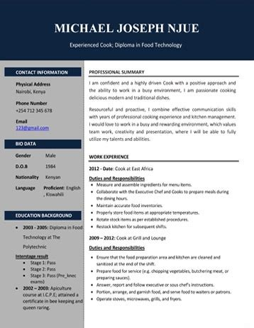 Free Cv Sles In Word Format by Cv Sles Pdf And Microsoft Word Format