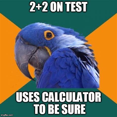 Two Picture Meme Maker - paranoid parrot meme imgflip