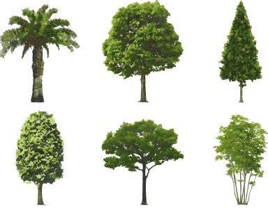 fake plastic trees annalise varghese medium