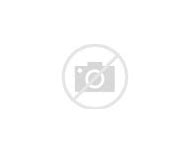 Funny Cat Halloween Costumes