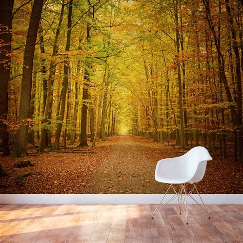 Wall Murals by Autumn Forest Path Wall Mural