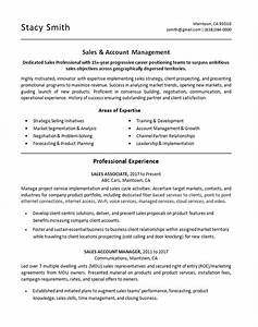 Summary Skills Examples Sales Associate Resume Example Account Manager