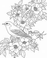 Coloring Flower Adults sketch template