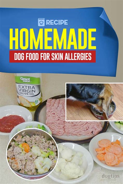 homemade dog food recipe  skin allergies