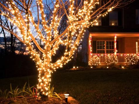 how many lights on christmas tree how to install safety lights on outdoor trees