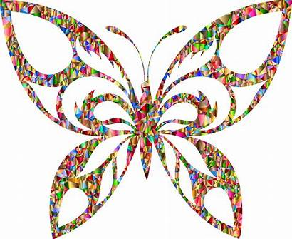 Butterfly Tribal Silhouette Poly Chromatic Vivid Low