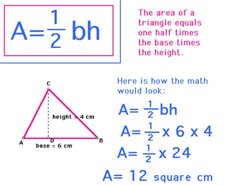 How To Area Of A Triangle Luis Math Blog