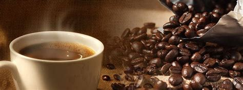 kaffeeflecken aus teppich entfernen auslegware