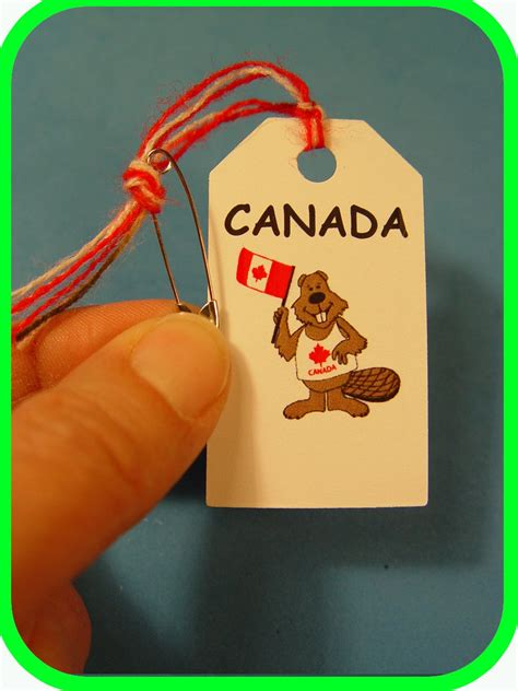 canada canadian beaver scout swaps girl craft kit