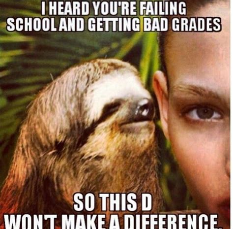Sloth Meme Jokes - 11 funny dirty sloth memes therackup