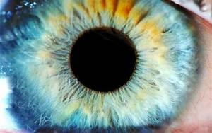 Eye Drops Could Treat Macular Degeneration