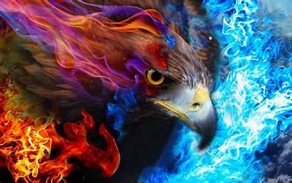 Eagle Fire Sky Background Wallpapers Desktop Abstract