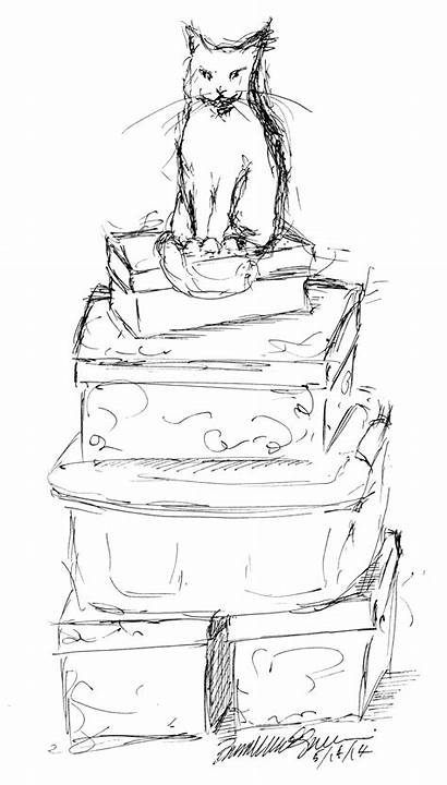 Pile King Sketch Drawing Cat Throne Boxes