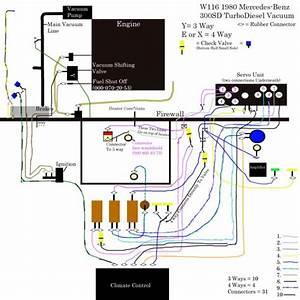 Vacuum Lines W116