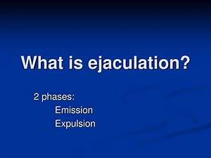 Ppt - Control Of Ejaculation Powerpoint Presentation