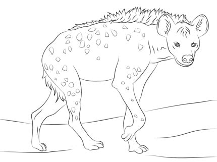 click   printable version  spotted hyena coloring