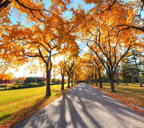 66 Wallpaper Autumn Note 3 Image Best Wallpaper Hd