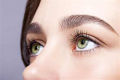 Hair Implants Louisville Tn 37777 Eyebrow Transplant For Eyebrows