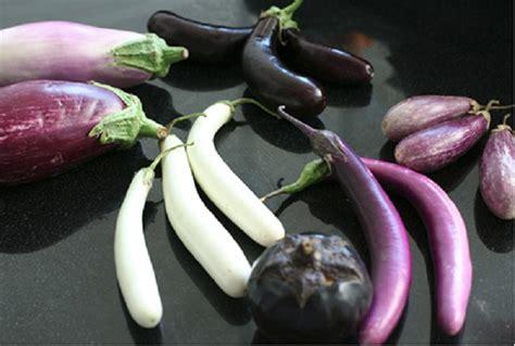 comment cuisiner l aubergine