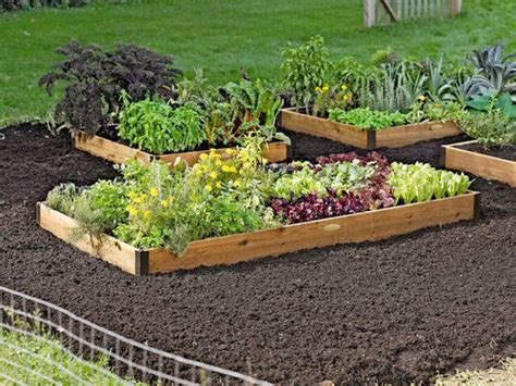 raised gardens for beginners how to build raised vegetable garden beds for beginner gardeners