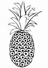 Pineapple Coloring Printable Parentune Spanish Worksheets Fruits Whitesbelfast Credit Preschoolers sketch template